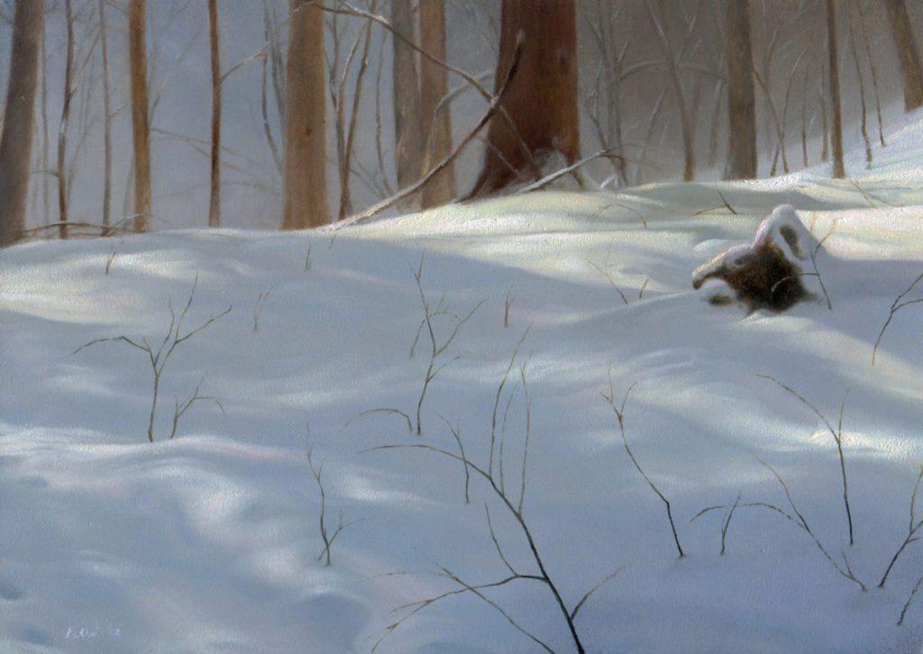 Winter in Tom's woods
