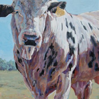 Heather Foster - A Bull Named Boo