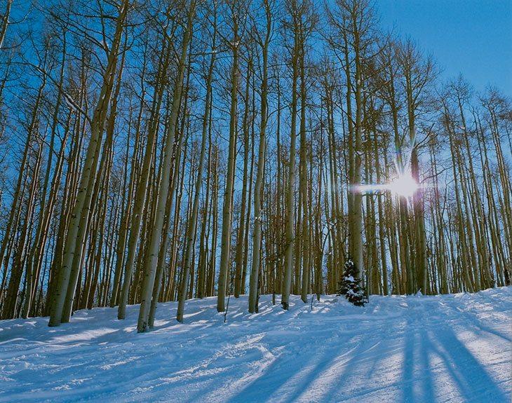 Tom Korologos, Splitting the Rays Snowmass