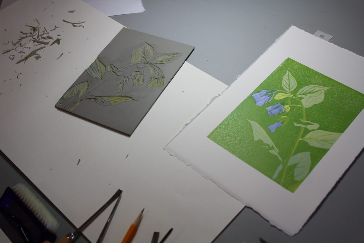 Bluebells print in progress on Sherri's drafting board.