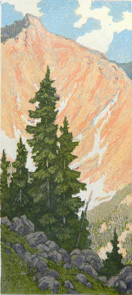 Leon Loughridge - Last Spruce