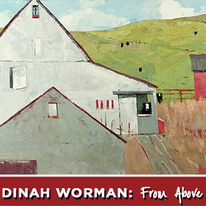 PRESS RELEASE: Dinah Worman, From Above