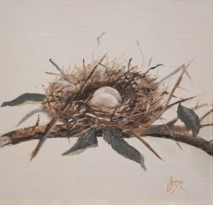 Marie Figge Wise - Mourning Dove Nest Eggs