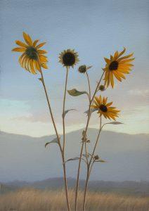 Brett Scheifflee - August Sunflowers