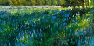 Peter Campbell - Lupines