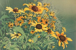 Sherrie York - Late Summer Blooms