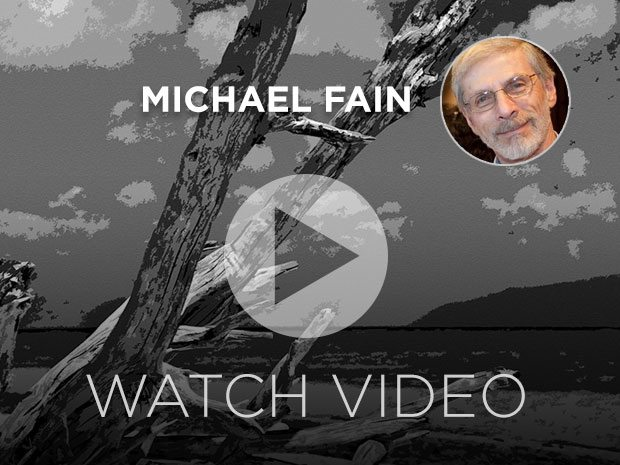 Watch-Video-Michael-Fain-Interview