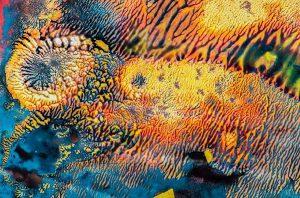 Gayle Waterman - Beyond Dreams 1/10