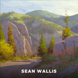 Sean Wallis, Artist