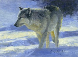 Veryl Goodnight - Wolf Study
