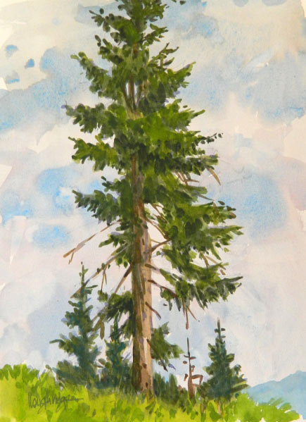 Leon Loughridge - Tall Pine