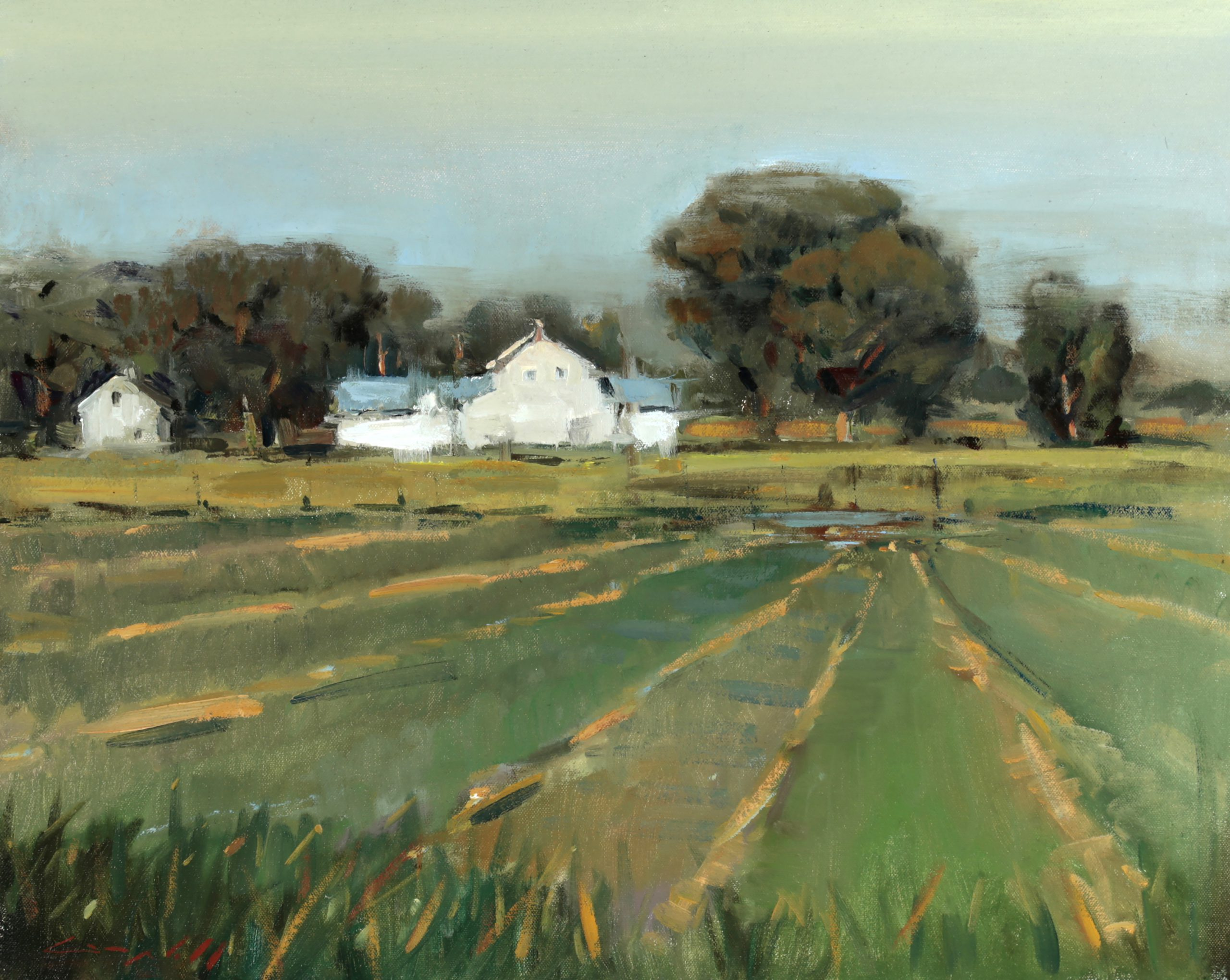 Peter Campbell - A Country House