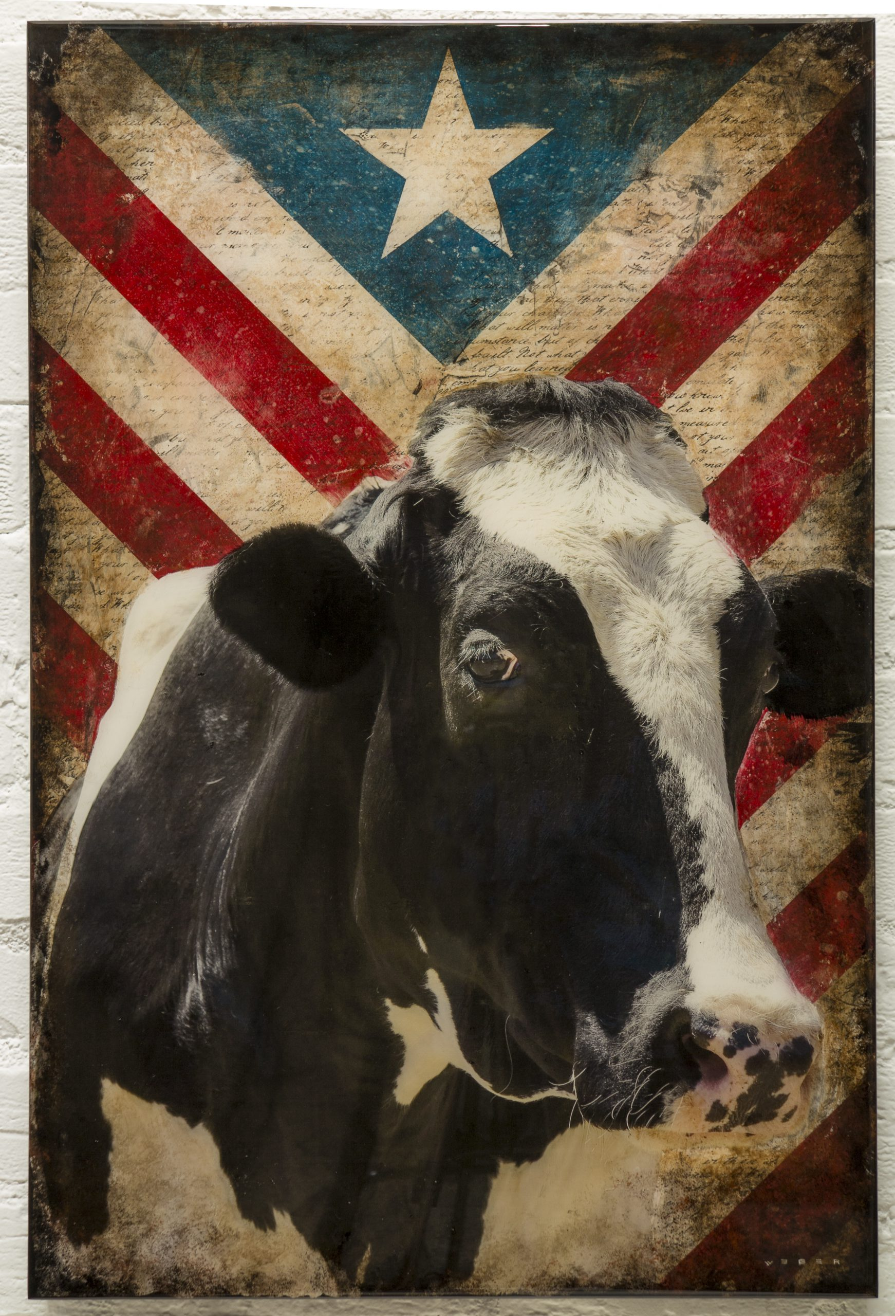 Mike Weber - Americana Cow