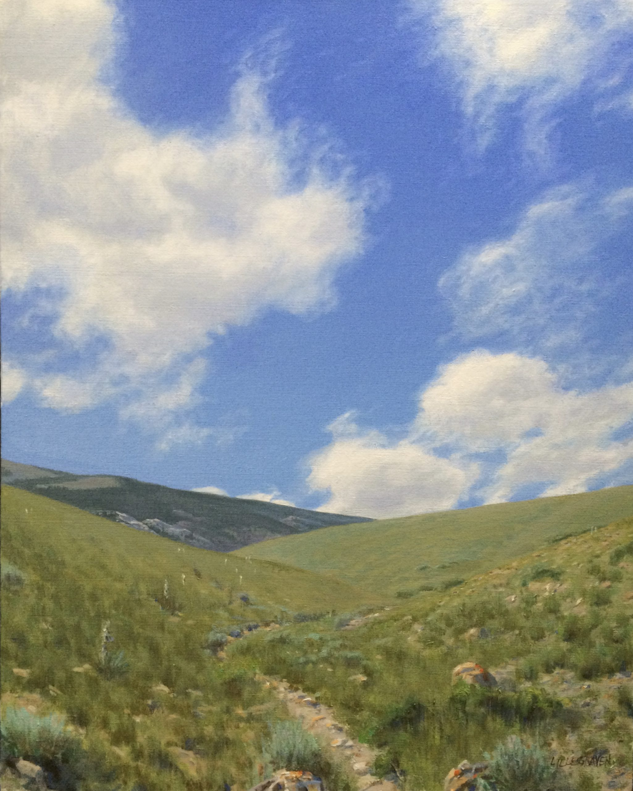 Linda Lillegraven - Bald Mountain Trail