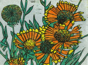 Sherrie York - Blanket Flowers