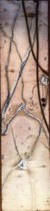 Michael Kessler - Branches (3)