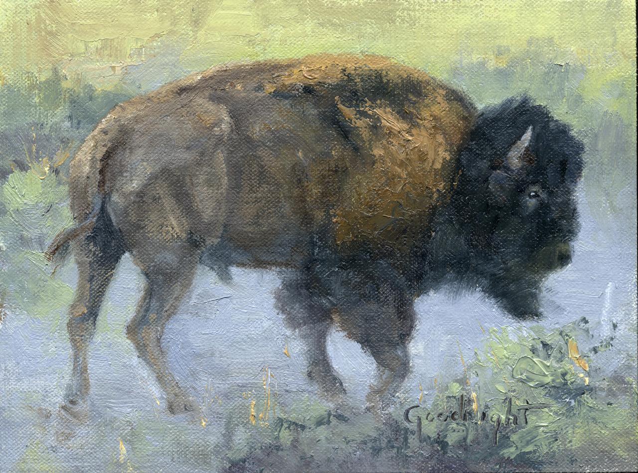 Veryl Goodnight - Bull Bison in Dust