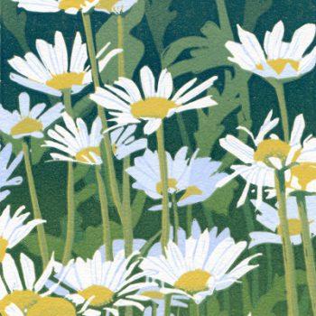 Sherrie York - Daisies 4/30