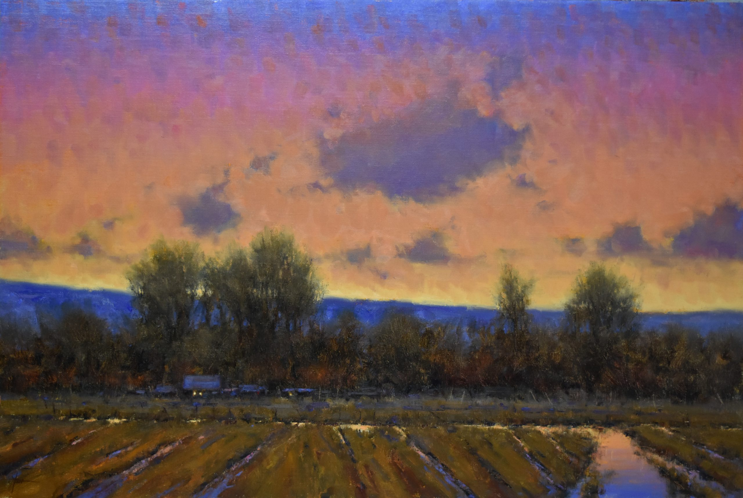 Dan Young - Evening Enchantment