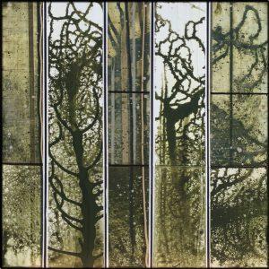 Michael Kessler - Forest (16)