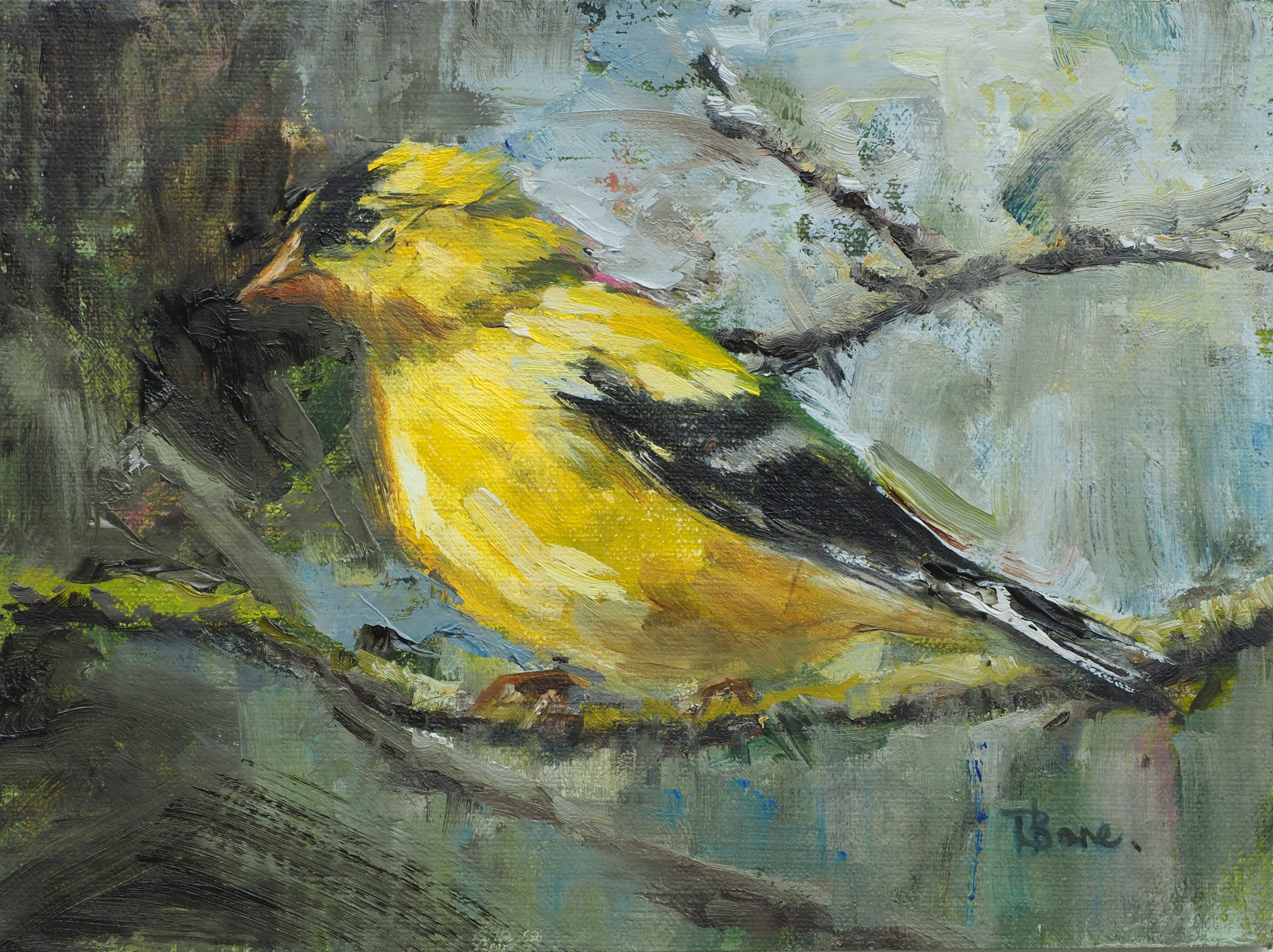 Tanya Bone - Goldfinch