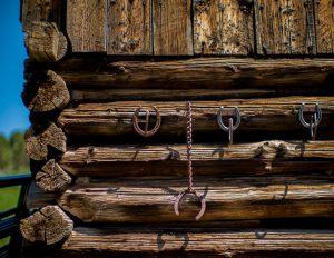 Tom Korologos - Horseshoes on a Wall 02
