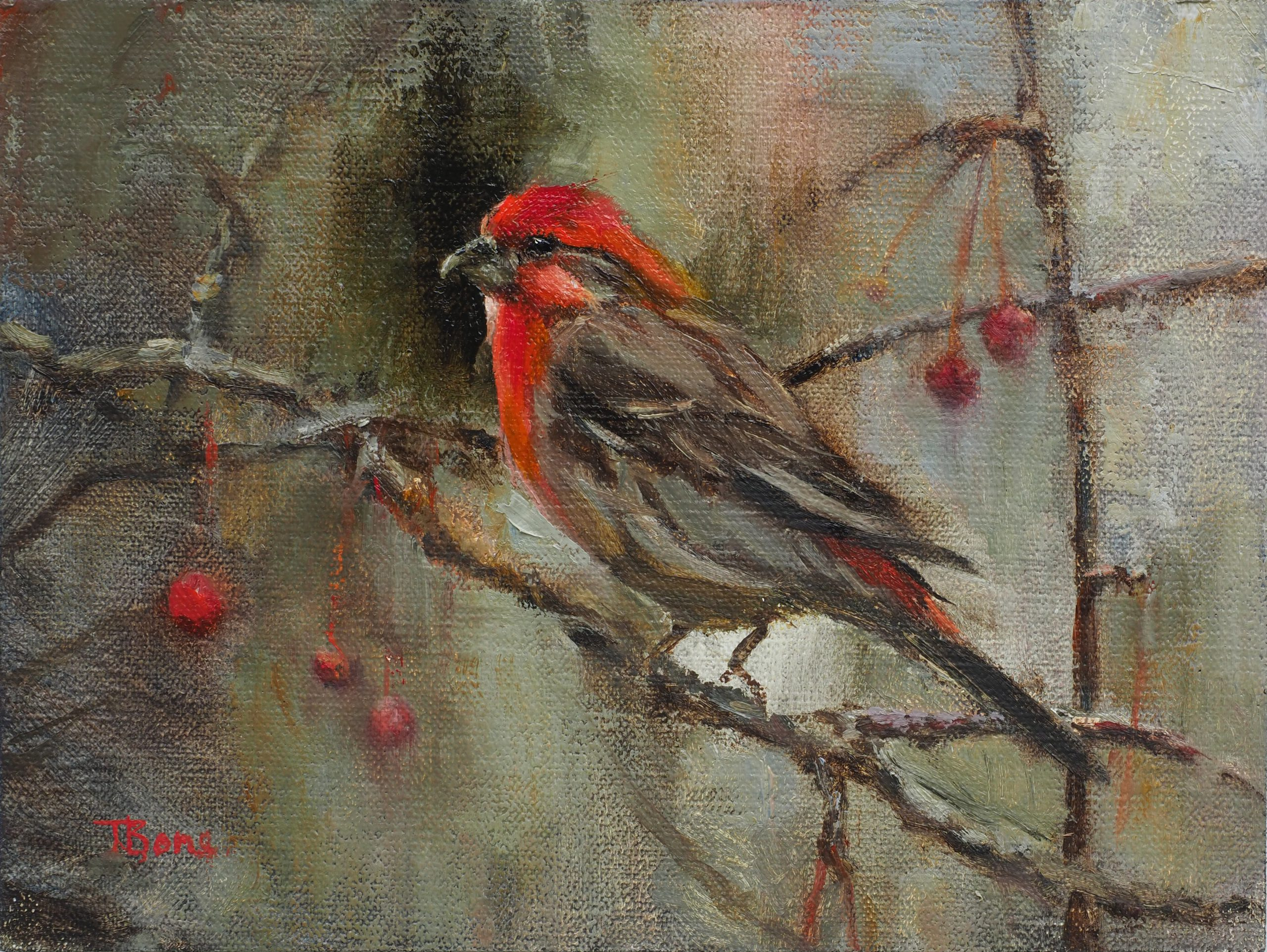 Tanya Bone - House Finch