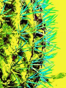 Kathryn  Rabinow  - Marrakesh Yellow 1/2