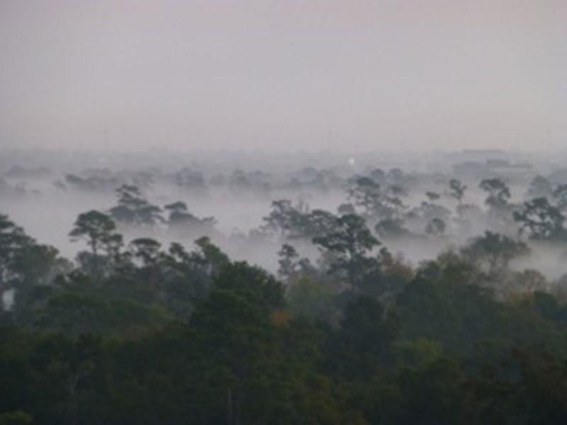 Kathryn  Rabinow  - Morning Fog 1/3