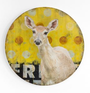 Mike Weber - My Deer Friend