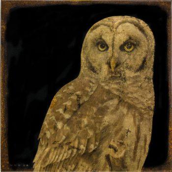 Mike Weber - Owl, 2017