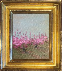 Marie Figge Wise - Peach Profusion
