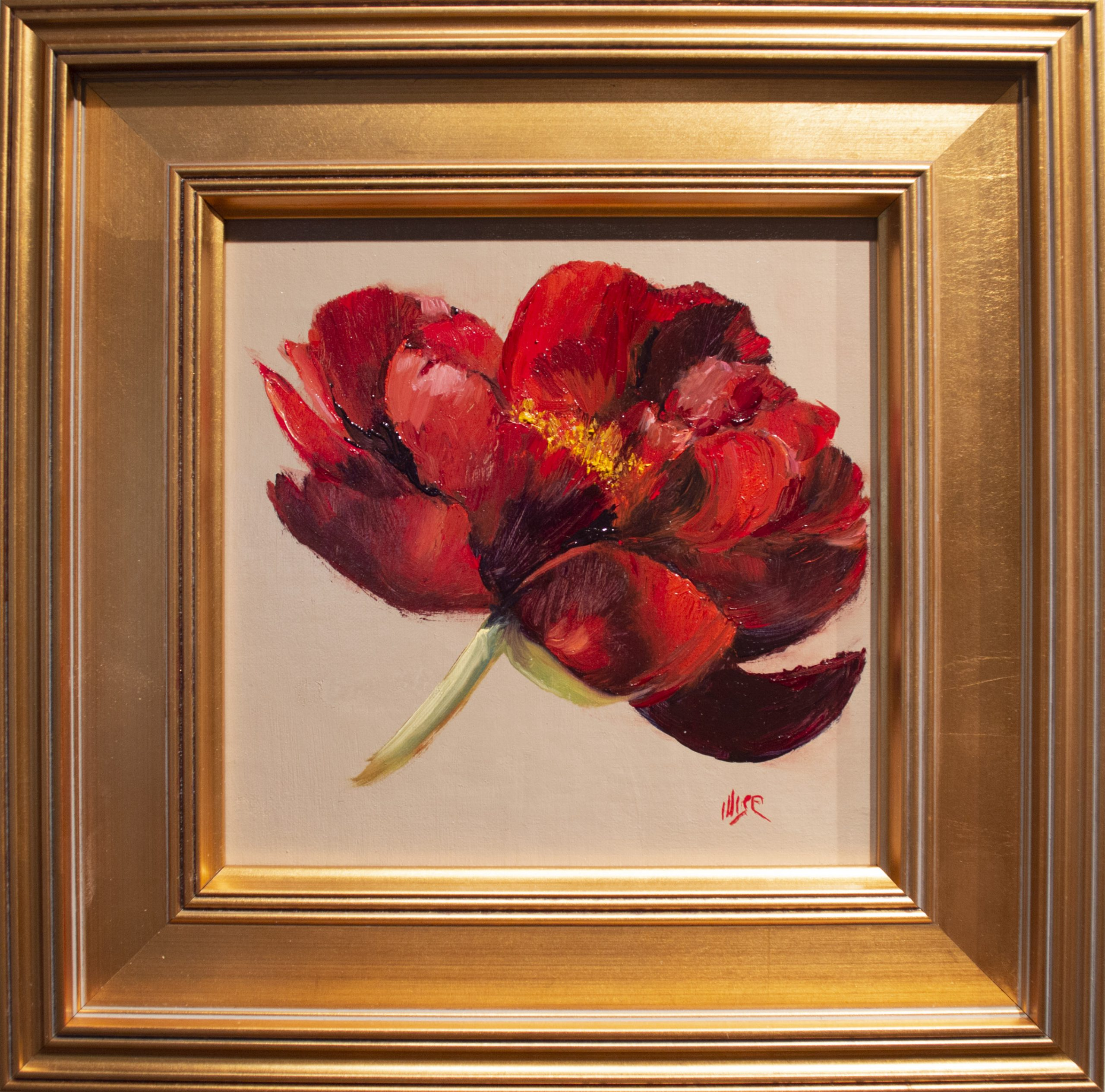 Marie Figge Wise - Peony