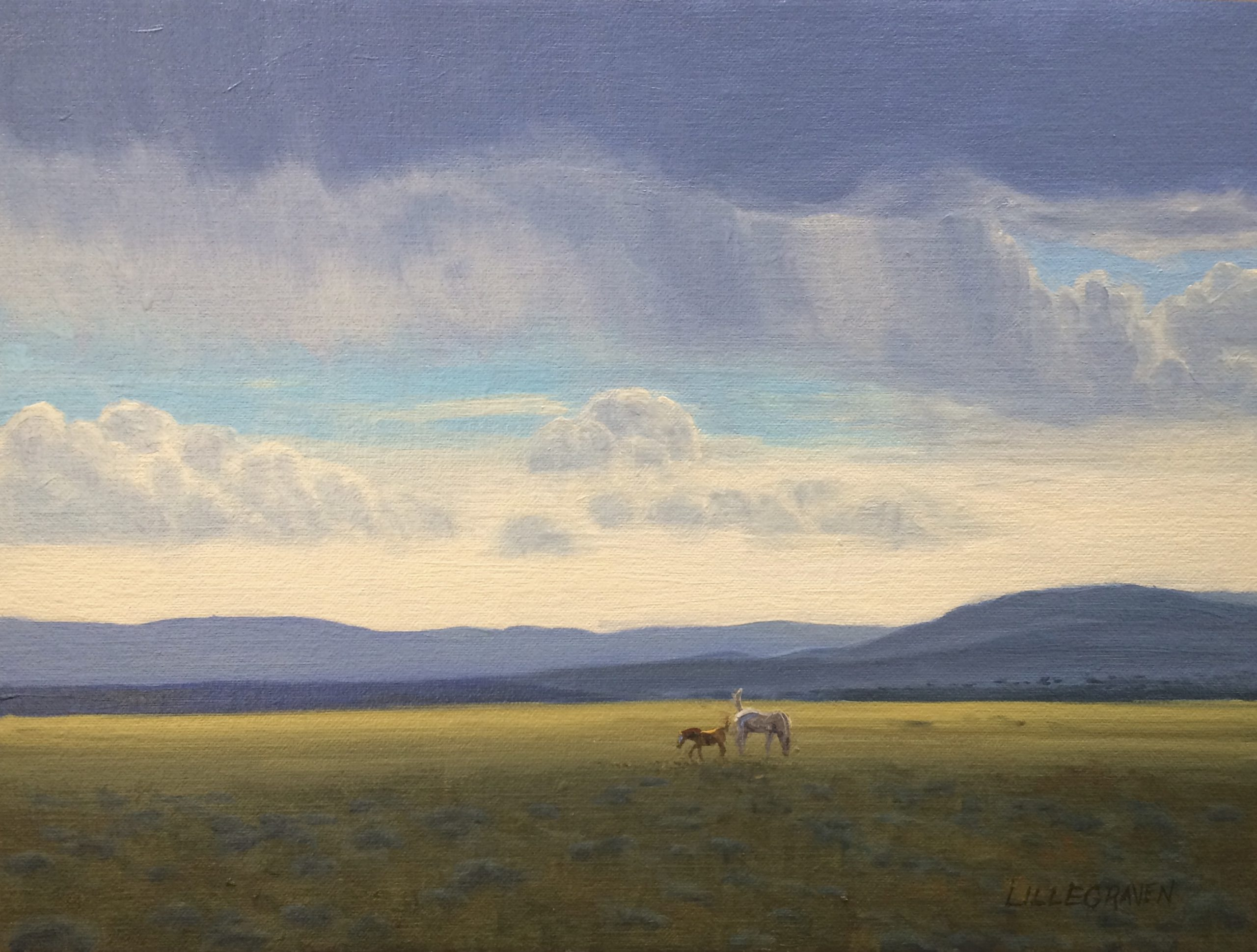 Linda Lillegraven - Study, Horses and Cloud Shadows