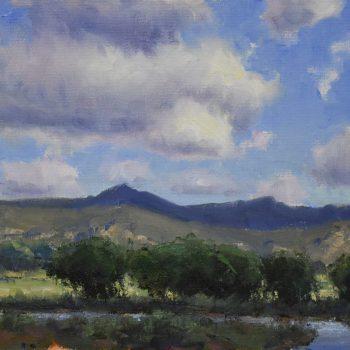 Dan Young - Summer Skies