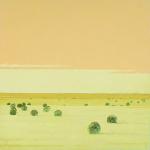 Terry  Gardner - Sunrise on the Plains
