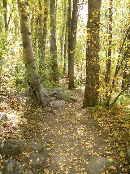 Kathryn  Rabinow  - The Path 3/3