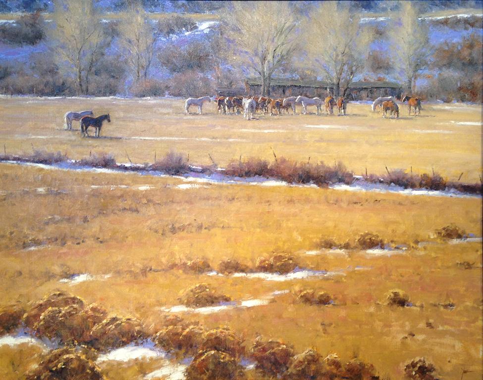 Dan Young - Warming the Herd