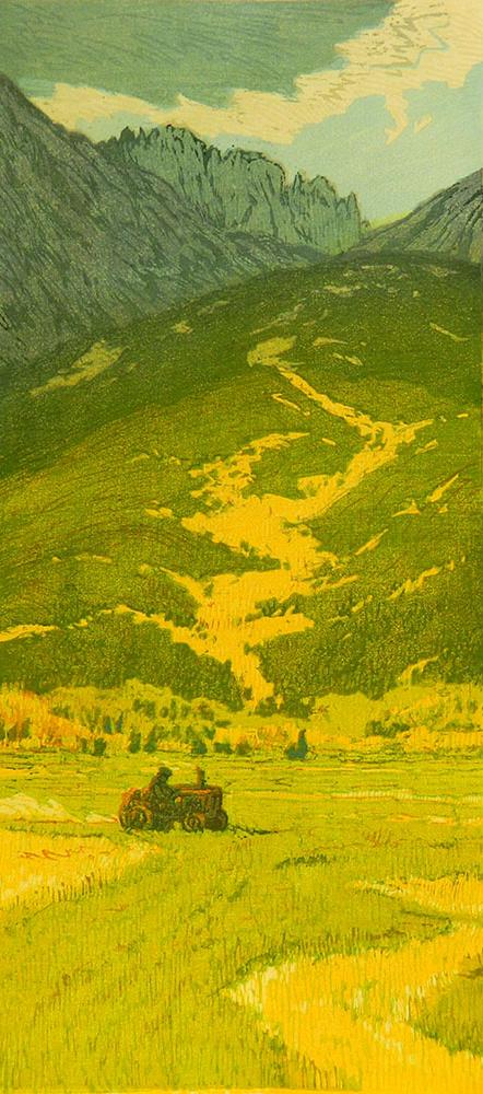 Leon Loughridge - Wet Mountains Hay 25/30