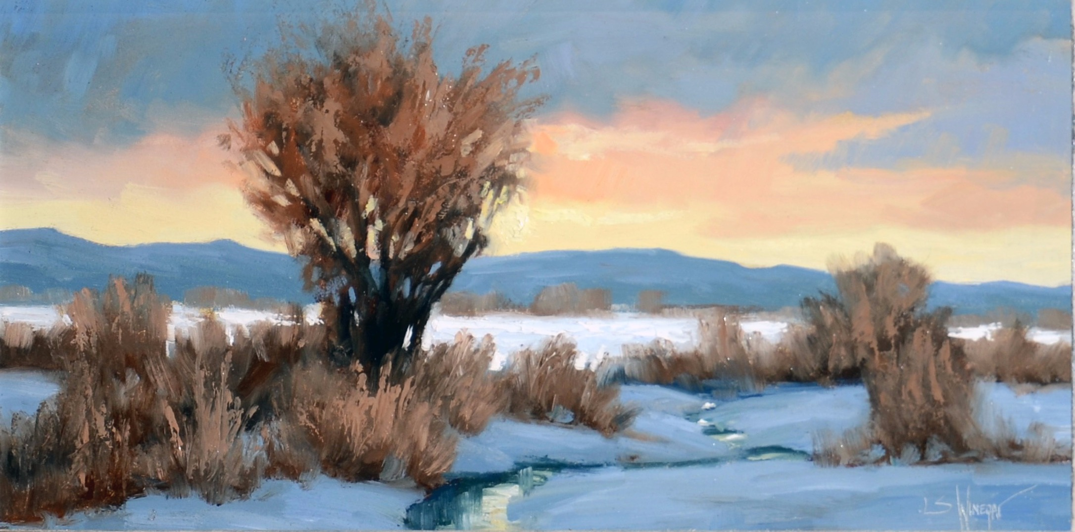 Simon Winegar - Winter Wonder