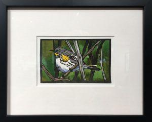 Sherrie York - Yellow-rumped Warbler