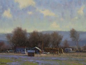 Dan Young - Bloomin' Fields