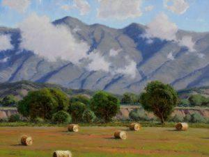 Dan Young - Colorado's Allure
