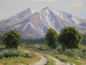 Dan Young - Early Summer on Sopris