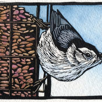 Sherrie York - Nut Hatch - 3