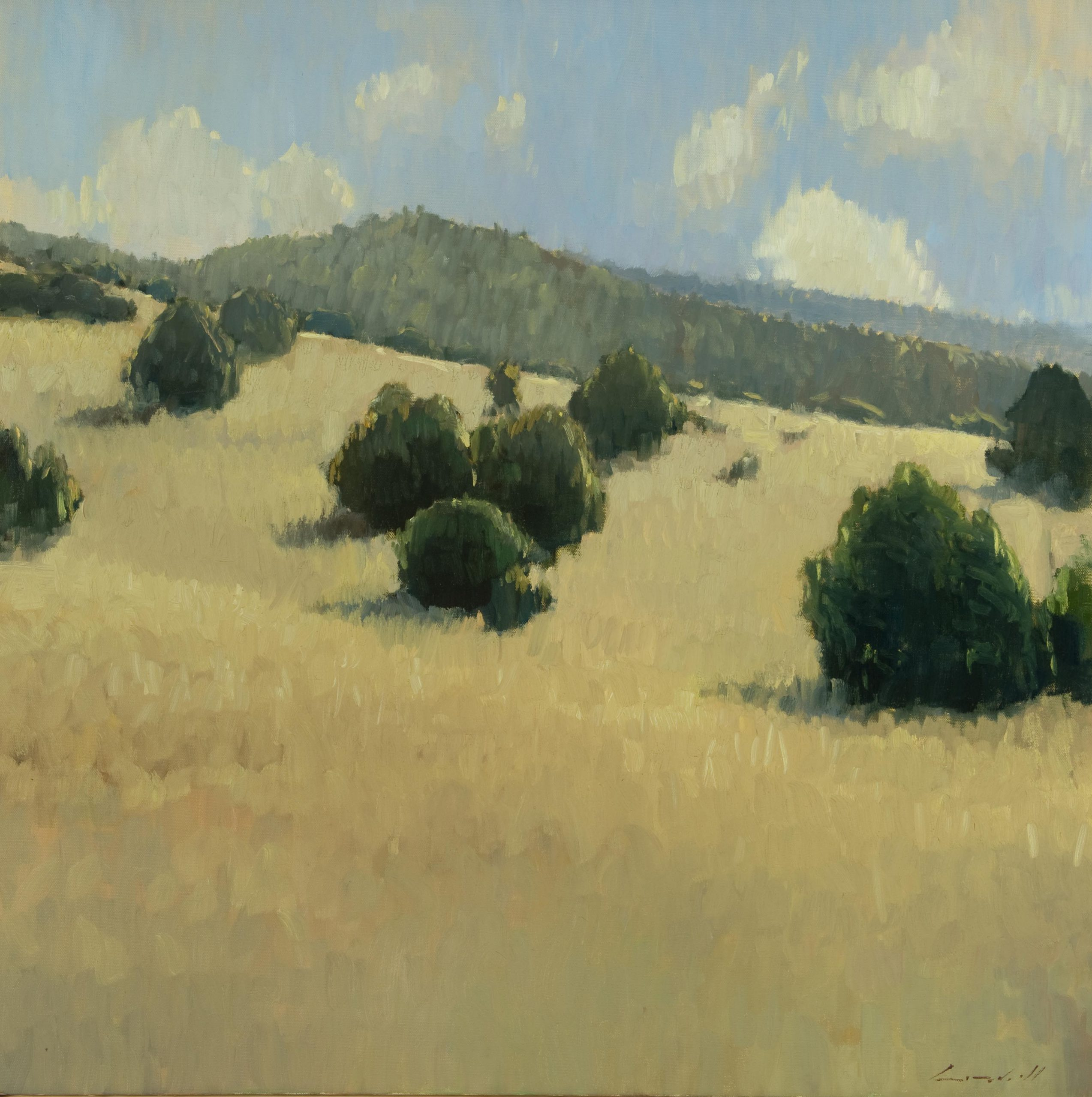 Peter Campbell - Summer Hillside