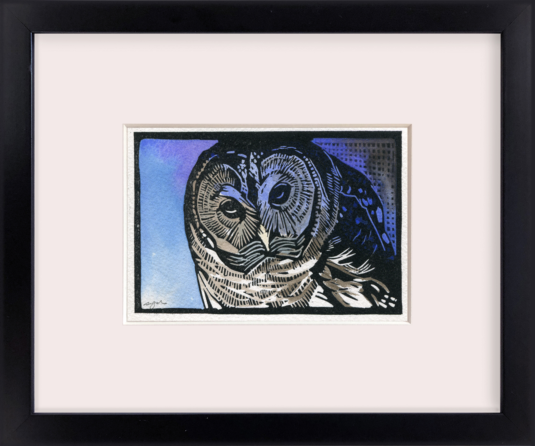 Sherrie York - Barred Owl