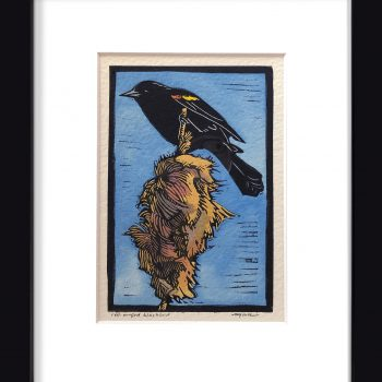 Sherrie York - Red-winged Blackbird - 4