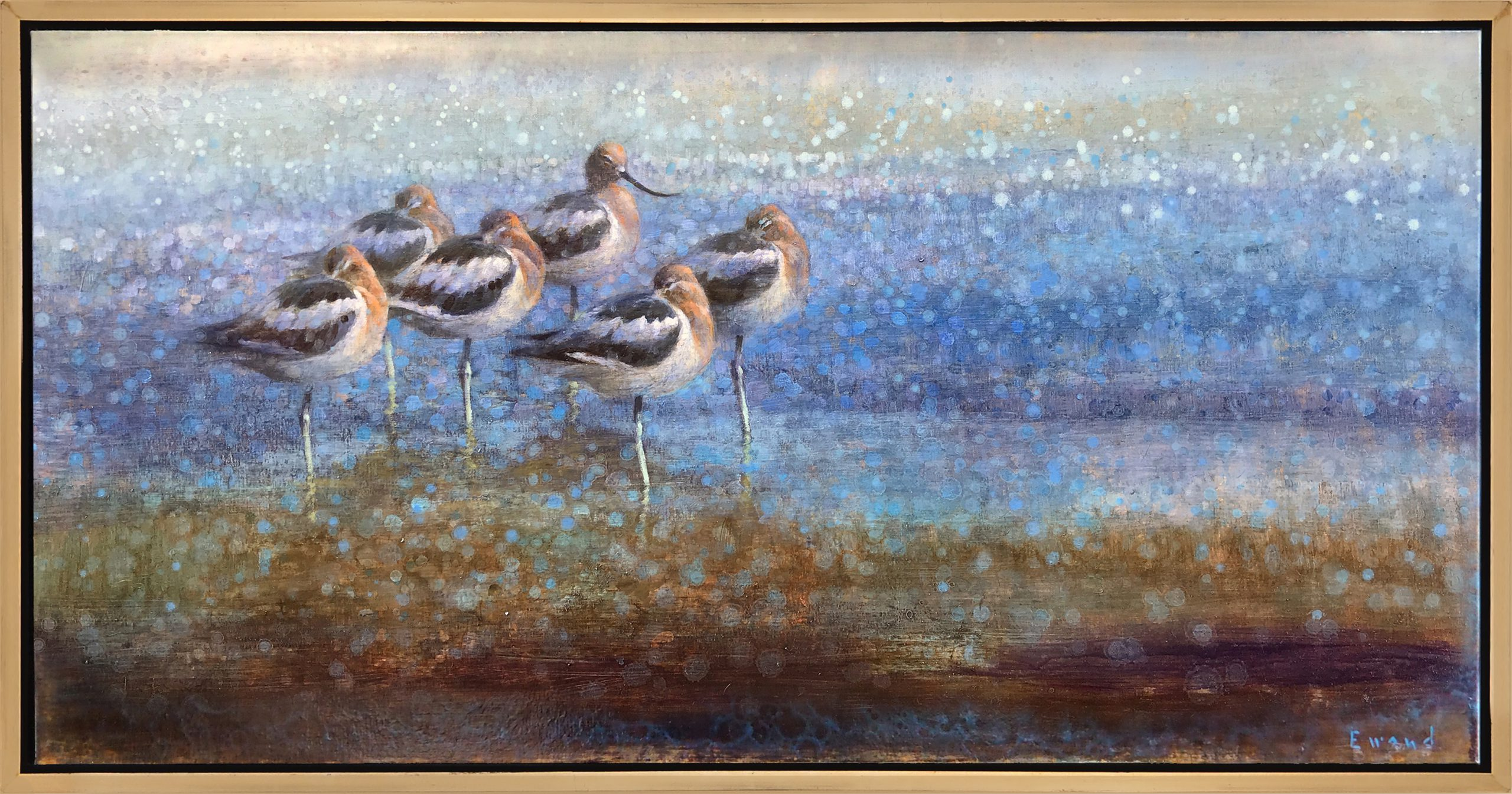 Ewoud de Groot - Resting Avocets