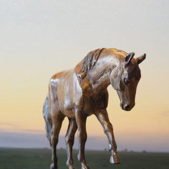Lisa Gordon - Rocken the Trail
